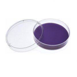 Plastic Disposable Petri Dish